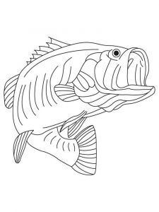Basses-coloring pages-8