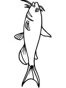 Catfish-coloring pages-16
