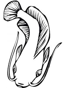 Catfish-coloring pages-9