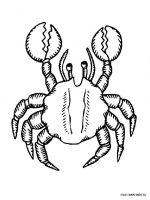 Crab-coloring-pages-11