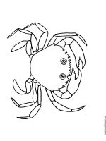Crab-coloring-pages-5
