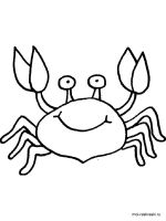 Crab-coloring-pages-7
