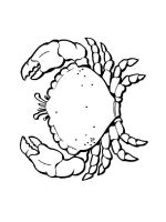 Crab-coloring-pages-8