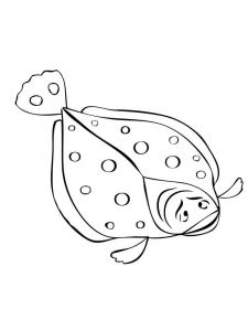 Flounders-coloring pages-6