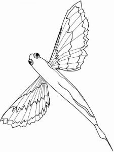 Flying-fish-coloring pages-5