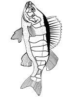 Freshwater-Fish-coloring-pages-7