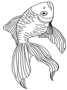 Goldfishes-coloring pages-12