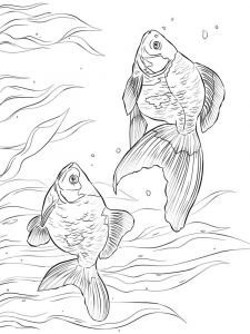 Goldfishes-coloring pages-13