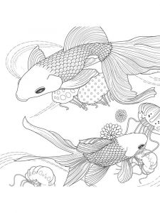Goldfishes-coloring pages-15