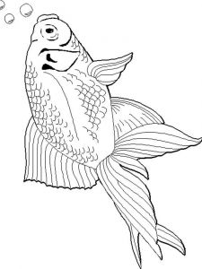 Goldfishes-coloring pages-3