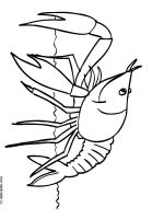 Hermit-Crab-coloring-pages-2