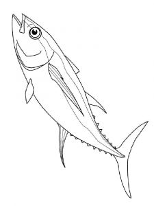 Herring-coloring pages-6