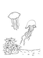 Jellyfish-coloring-pages-27