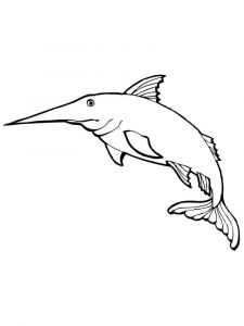 Marlin-coloring pages-4