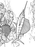 Marlin-coloring pages-7
