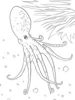 Octopus-coloring-pages-10