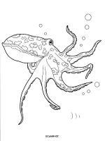 Octopus-coloring-pages-2