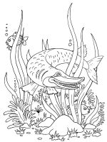 Pike-coloring-pages-15