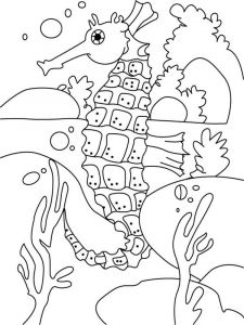 Seahorse-coloring pages-10