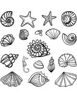Seashell-coloring-pages-13