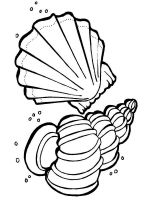 Seashell-coloring-pages-20