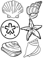 Seashell-coloring-pages-21