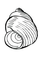 Seashell-coloring-pages-23