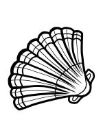 Seashell-coloring-pages-3