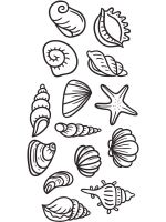 Seashell-coloring-pages-5