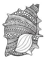 Seashell-coloring-pages-7