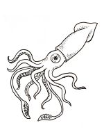 Squid-coloring-pages-1