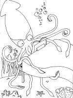 Squid-coloring-pages-14