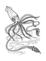 Squid-coloring-pages-4