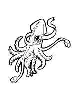 Squid-coloring-pages-7