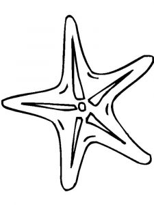 Starfish-coloring pages-7