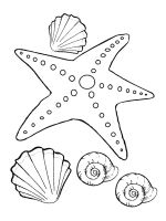 Starfish-coloring-pages-27