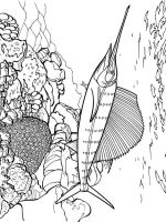 Swordfish-coloring pages-1