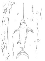 Swordfish-coloring pages-7