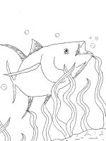 Tuna-coloring pages-5
