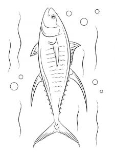 Tuna-coloring pages-6