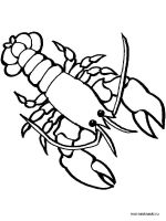 crayfish-coloring-pages-10