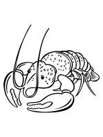 crayfish-coloring-pages-17