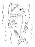sea-fish-coloring-pages-6