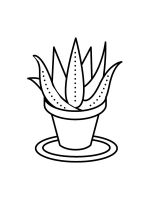 Aloe-coloring-pages-15