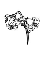 Bellflower-coloring-pages-1