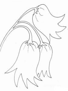 Bellflower-coloring-pages-6