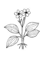 Buttercup-coloring-pages-12