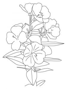 Buttercup-coloring-pages-5