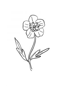 Buttercup-coloring-pages-9