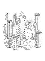 Cactus-coloring-pages-29